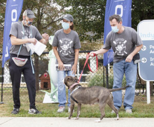 """Three volunteers wearing face masks and grey """"mutt strut"""" shirts, one has a grey large breed dog on a leash."""